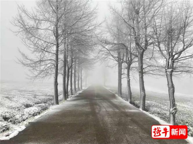 Shao Road_.jpg