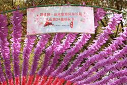 Houshan Mountain Peach Blossom Festival