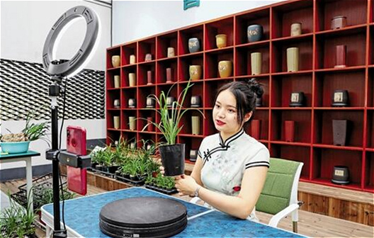 Shaoxing harnesses digital technology to grow orchid industry