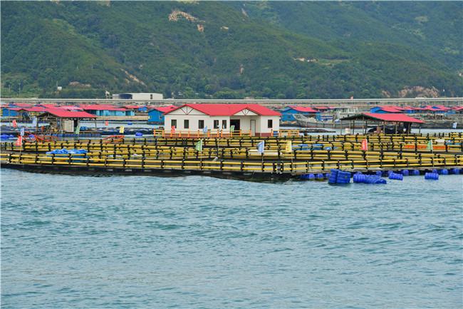 Ecologicalbreeding proves successful in Ningde, Fujian