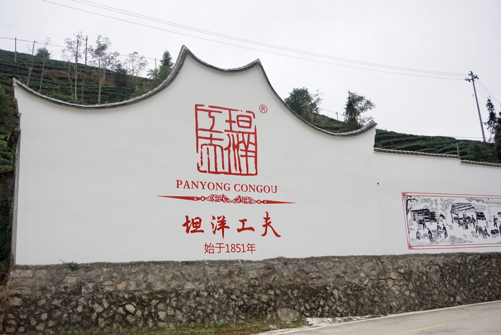 Tea brings prosperity to Fujian village