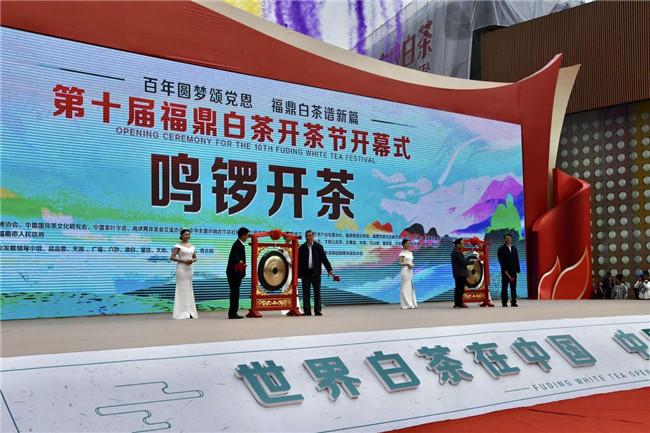 White tea festival opens in Fuding