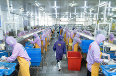 Maoming exports boiled fish for the first time
