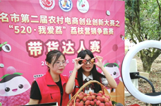 Output value of Maoming lychees exceeds $1.1b this year
