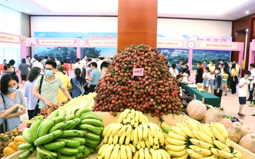 Maoming fruit expo catches people's eyes