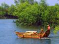 Leizhou rare marine life national nature reserve