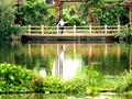 The Lvtang River Wetland Park