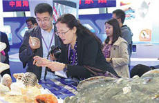 Annual event in metropolis showcasing maritime sector's heavyweights