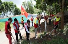 New volunteer group established in Donghai Island