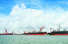 Ports technology innovation exchanges held in Zhanjiang