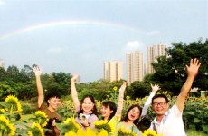 Sunflowers attract 40,000 tourists during National Day holiday