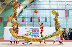 Chinese martial arts a big hit in Europe