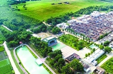 Leizhou promotes living environment in rural areas