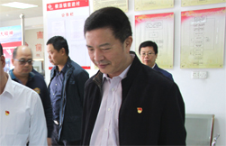 Acting mayor inspects project construction in Xuwen, Leizhou