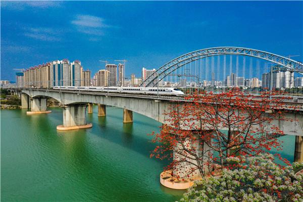 《 开往春天的列车》卢伊琳   手机13607864396-2021年3月2日摄于邕江铁路桥DJI_0192 - 副本_副本.jpg