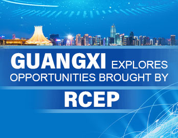 Guangxi explores opportunities brought by RCEP