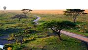 Direct air route links Guangzhou to Tanzania