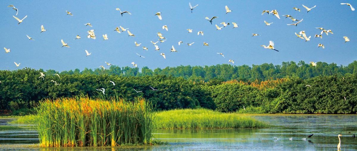 084-085南沙湿地公园.jpg
