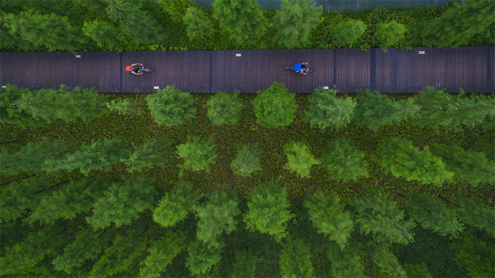 Tianhe Wetland Park