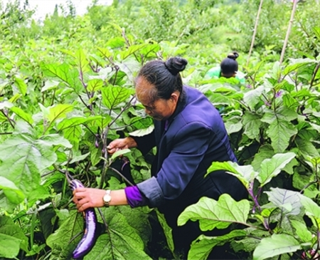 Baiyun district launches measures to help businesses resume