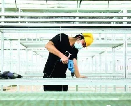 Baiyun to boost edible fungi industry
