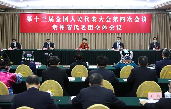 Guizhou NPC delegation reviews Government Work Report