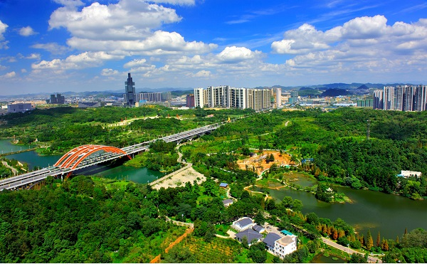 Guizhou's businesses flourish in current year