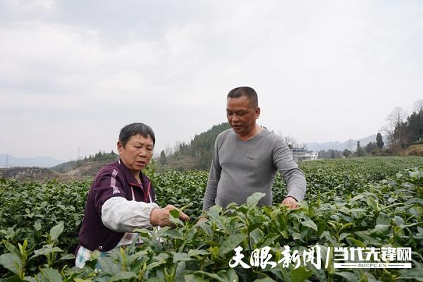 Zhou Shaojun: Young people essential to rural revitalization