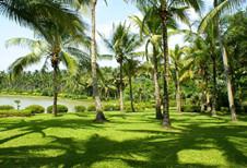 Xinglong Tropical Botanical Garden (Wanning city)