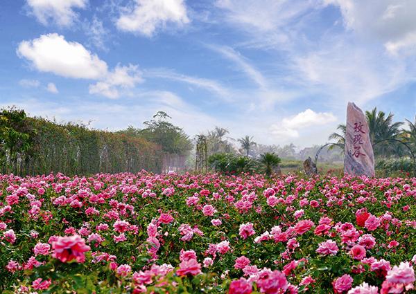 Yalong Bay International Rose Valley (Sanya)