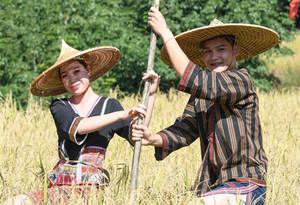 Shanlan cultural festival of Baisha kicks off in Hainan