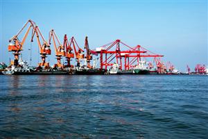 Yangpu Bonded Port Area introduces 585 enterprises this year