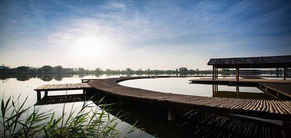 南湖湿地公园3 - 副本.jpg