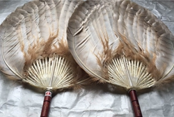 Huzhou feather fan