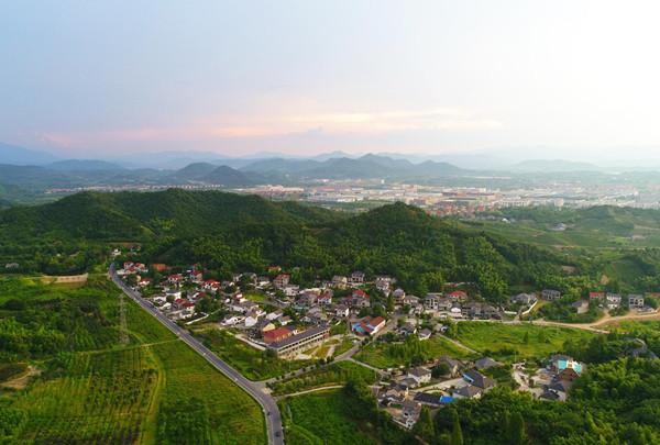 Anji village reaps dividends from green development