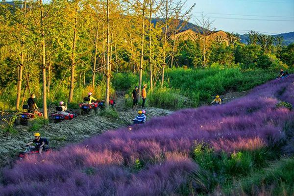 Flower Planet most popular destination in Wuxi during holiday
