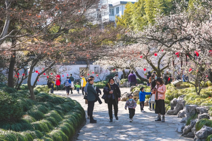 Six places to enjoy plum blossoms