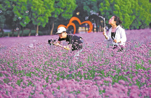 Wuxi to open 50 new parks