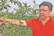 IoT technologies support modern agriculture in Wuxi