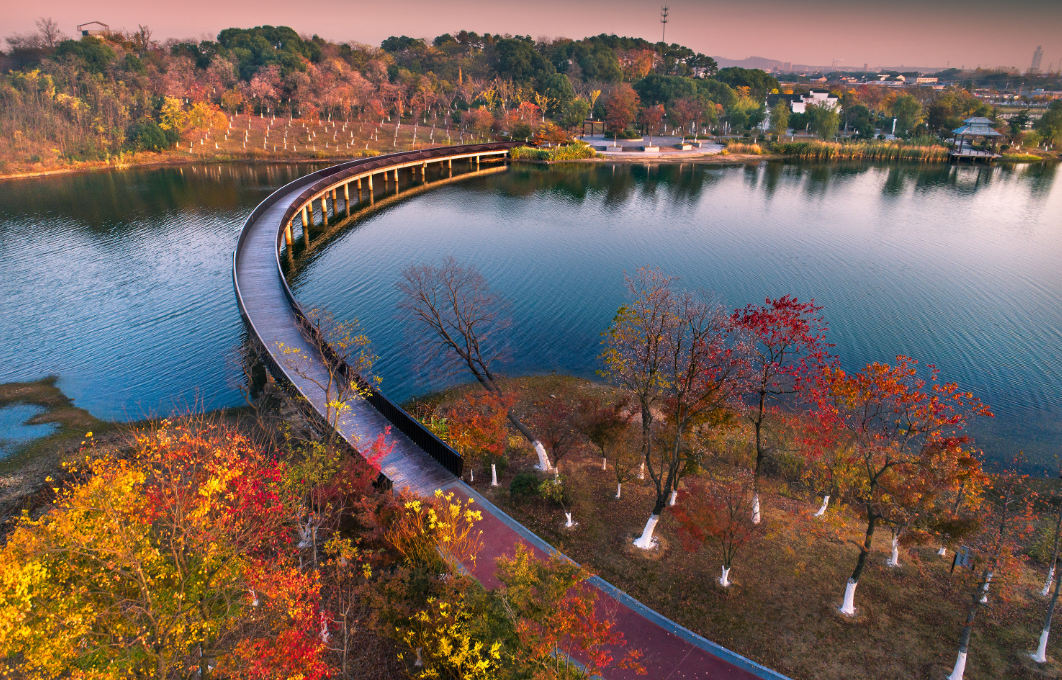 In pics: Zhangjiagang bursts into color in autumn