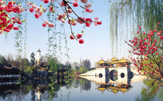 Search for more colleges and universities in Yangzhou