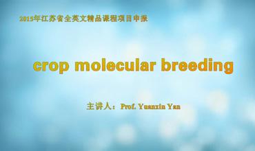Crop Molecular Breeding