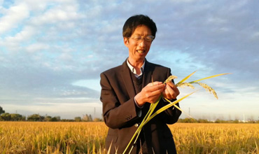 Zhang Ruihong: A professor in the field