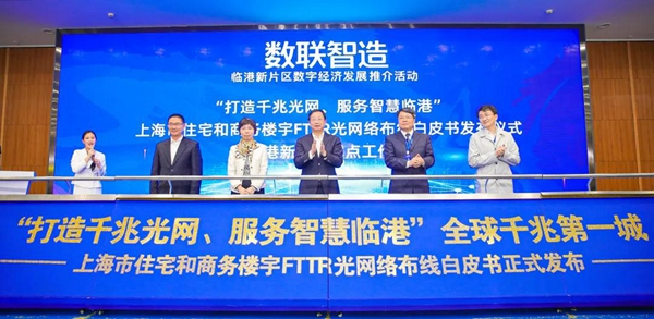 Lin-gang Special Area launches dedicated internet access.jpg