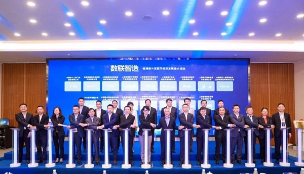 Lin-gang Special Area launches dedicated internet access2.jpg