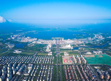 Lin-gang outlines plans to spur intelligent manufacturing.jpg