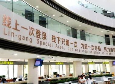 Lin-gang firms get preferential business tax certification.jpg
