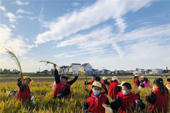 Pupils experience joy of harvest in Tongzhou