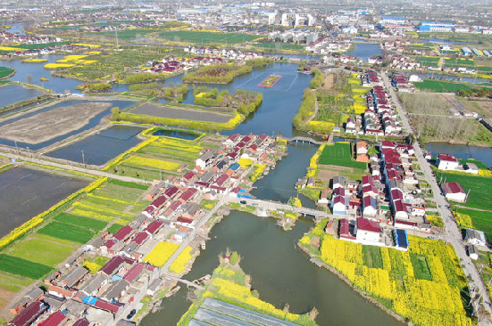 ​Enjoy exquisite scenes of spring in Hai'an