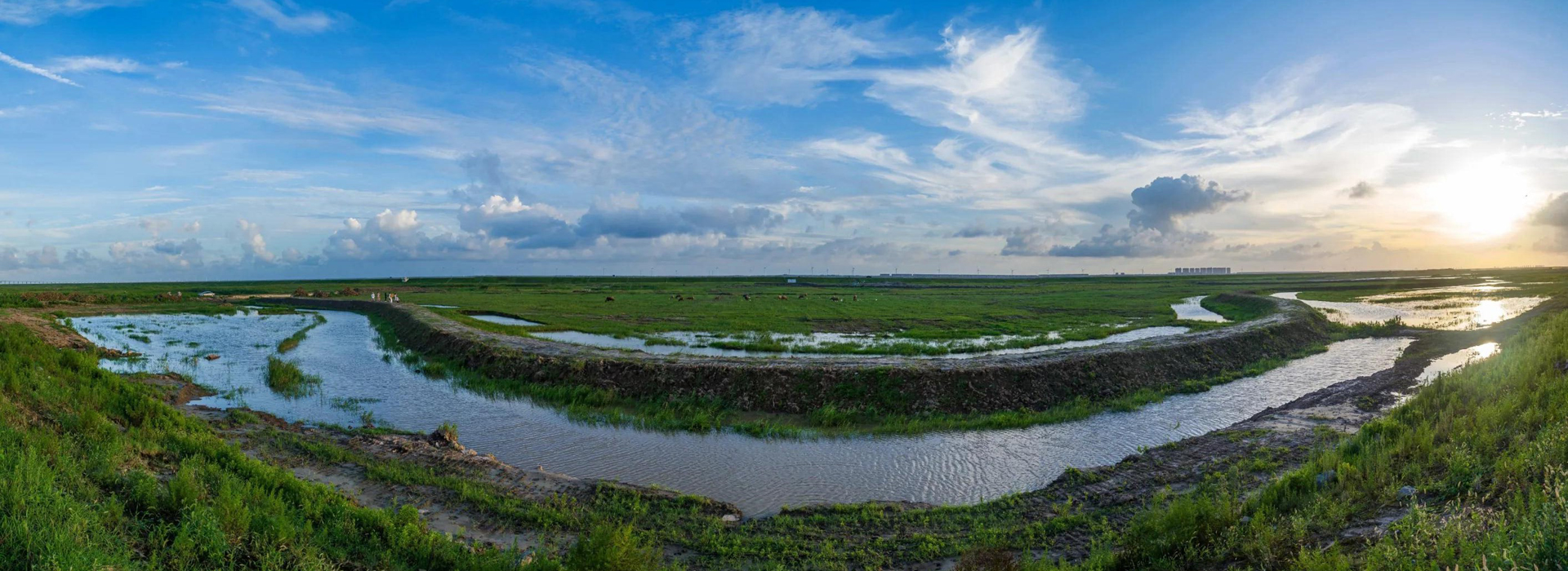 Photographers, visitors enjoy poetic grassland of Qidong